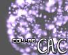 [C.A.C] FieryPur Burst