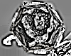 Serafina Rose Ring Black