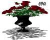 eva's red/roses plant