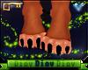 *D* Lion Feety F