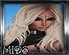 (M) Yseult Ash Blonde