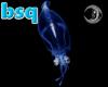[bsq] Blue Squid