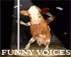 Funny Voices Br