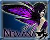 *Pishogue Nirvana Wings