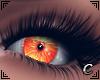 Miss Pumpkin Eyes