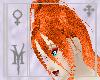 Akinari Soft Ginger