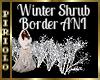 Winter Shrub Border ANI