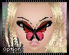 :O: Nose Butterfly V2