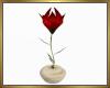 Single Flower Plant