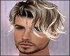Blond Tips Andre Hair