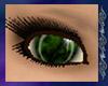 {A} Fusion Eyes ~ Bias