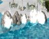 Aldabra STONES/SPLASH