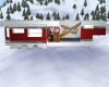 Ski Doo  Trailor