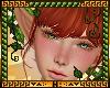 H! Yoko Ginger+Lash+Brow