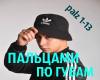 1-13 PalzamiPoGybam