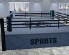 Gym! Boxing Ring