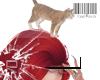 Head Cat F.