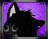 ☽ Husky Ears ~ Ani.