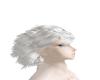 Silver Dragon Hair