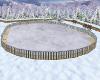 ice rink large