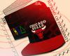 Chicago Bulls TI$A Bred