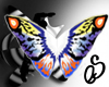 coloful butterfly wings
