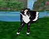 Skunk Girl Tail V2