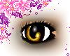 Hazel Dreamer Eyes