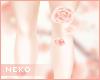 [HIME] Ever Leg Roses