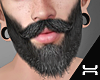 ♛.Beard.KR