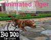 [BD] Animated Tiger