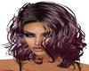 *Z* Purple Sandra