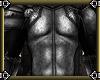 ~E- Avalon Armor M Body