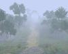 *LL* Fog Room