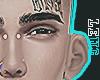 Add on Ears $$$