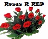 ~1 dzn Red Roses