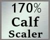 Scale Calf Calve 170% MA