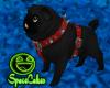[SC]Black Pug Pet