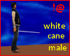 !@ White cane male