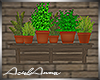 Garden Plant Shelf