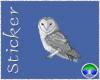 ~CJD~Rindaes Owl
