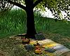 Tree Picnic*