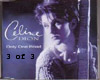 Celine Dion one road pt