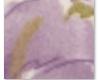 Cobertor Lilac