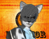 ~I~WolfMoon Grey