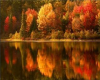*L* Autumn Lake BG