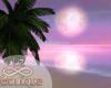 Sunset Beach Paradice
