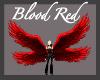 Blood Red Wings