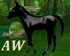 Jet Black Foal