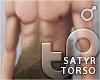 TP Satyr Torso